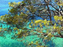 Bucht Mallorca von Thomas Brandt
