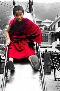Buddhist Monk by Ravi Dhingra