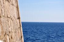 sea dreaming by Karolina Olempska