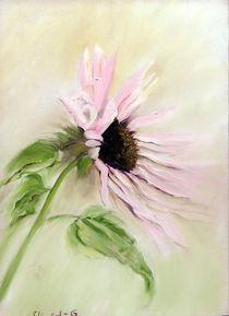 Blütenzauber von Ingrid Clement-Grimmer
