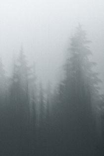 Alpine Ramble; Romstad 09 von Derek Dix
