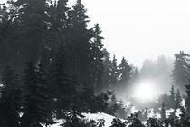Alpine Ramble; Romstad 06 von Derek Dix