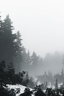 Alpine Ramble; Romstad 02 von Derek Dix