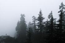 Alpine Ramble; Romstad 01 von Derek Dix