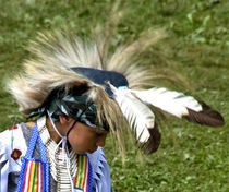 Eagle Feather by Andrew Hartl