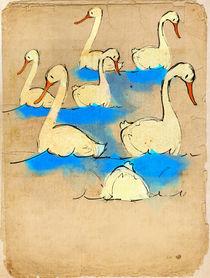 Swans a' swimming von Imogen  Henlich