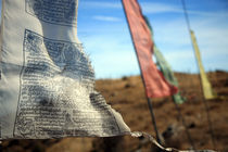 Buddhist prayer flags on the wind by michal gabriel