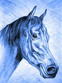 Pferd von Thomas Brandt