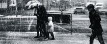 Schneetreiben von Hartmut Fittkau