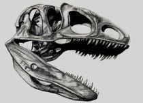 Neovenator Skull by Andrew Lanfear