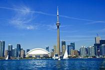 Toronto Skyline by Andrew Hartl