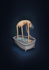 Bath time by Renato Klieger Gennari
