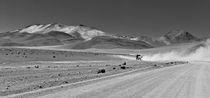Bolivian landscape von fbphoto
