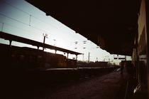 The morning train by Pedro Ribeiro