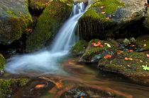 A little waterfall by Danislav Mironov