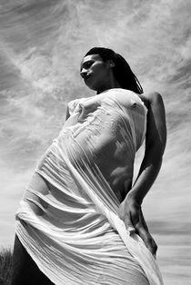 Statuesque Woman 2 von wayne pilgrim