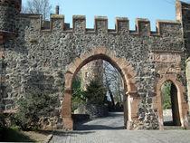 Burg-eingang