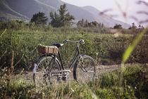 Bicycle by Nicolás Ravet