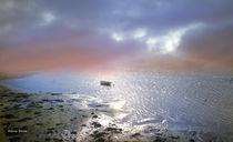 Marea Baja von Alfonso García