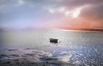 Barca en el Anyons