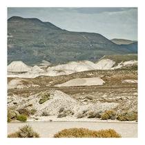 Patagonian Landscape von Sergio Miranda