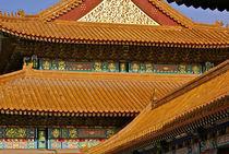 Forbidden City 02 von volkan duran