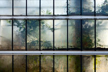 imprisoned #4 by Dennis Brebels