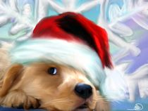 Merry christmas by athena