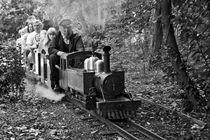big train model ride von michal gabriel