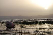 Sea of Galilee  by idan arbesman