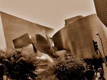 Walt Desney memorial.Ghery. Los Angelos by Maks Erlikh