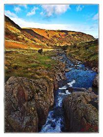 Lake District Set 1 - Borrowdale & Seathwaite LD1-08 von Chris Atkinson