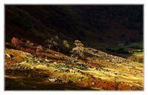 Lake District Set 1 - Borrowdale & Seathwaite LD1-61 by Chris Atkinson