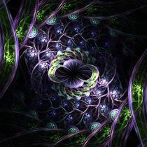 Infinite Cell Spiral 2 von Branden Thompson