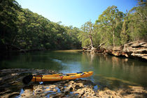 River in bush  in AU by michal gabriel