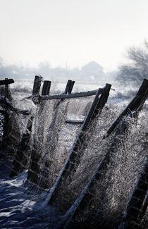 Winter Tale by Adrian Sandor