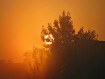 Sunrise von Marina Herceg