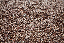 Coffee beans von michal gabriel