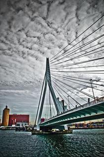Erasmus bridge, Rotterdam von Stefan Antoni - StefAntoni.nl