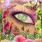 Eyedentity-25
