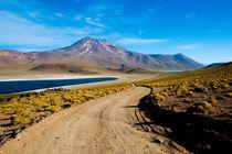 Desert Lagoon by Manuel Fuentes
