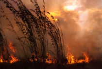 Bushfire Sunset by photomarc