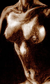 Akt - Frau - Brüste - Sepia von Susanne Edele