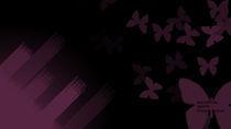 Butterfly von Priyank Rathod