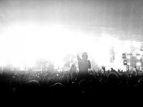 Ultra Music Festival by Karl Noelle