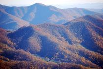 Roan Mountain 4 von Melanie Mayne