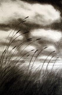 Sea Grass by Christina Schwartzman