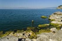 Ohrid lake  by Plamen Petkov