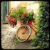 La Bicyclette au Geranium by Marc Loret