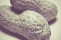 Erdnüsse grau by dresdner